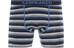 Icebreaker Anatomica Ondergoed onderlijf grijs/blauw